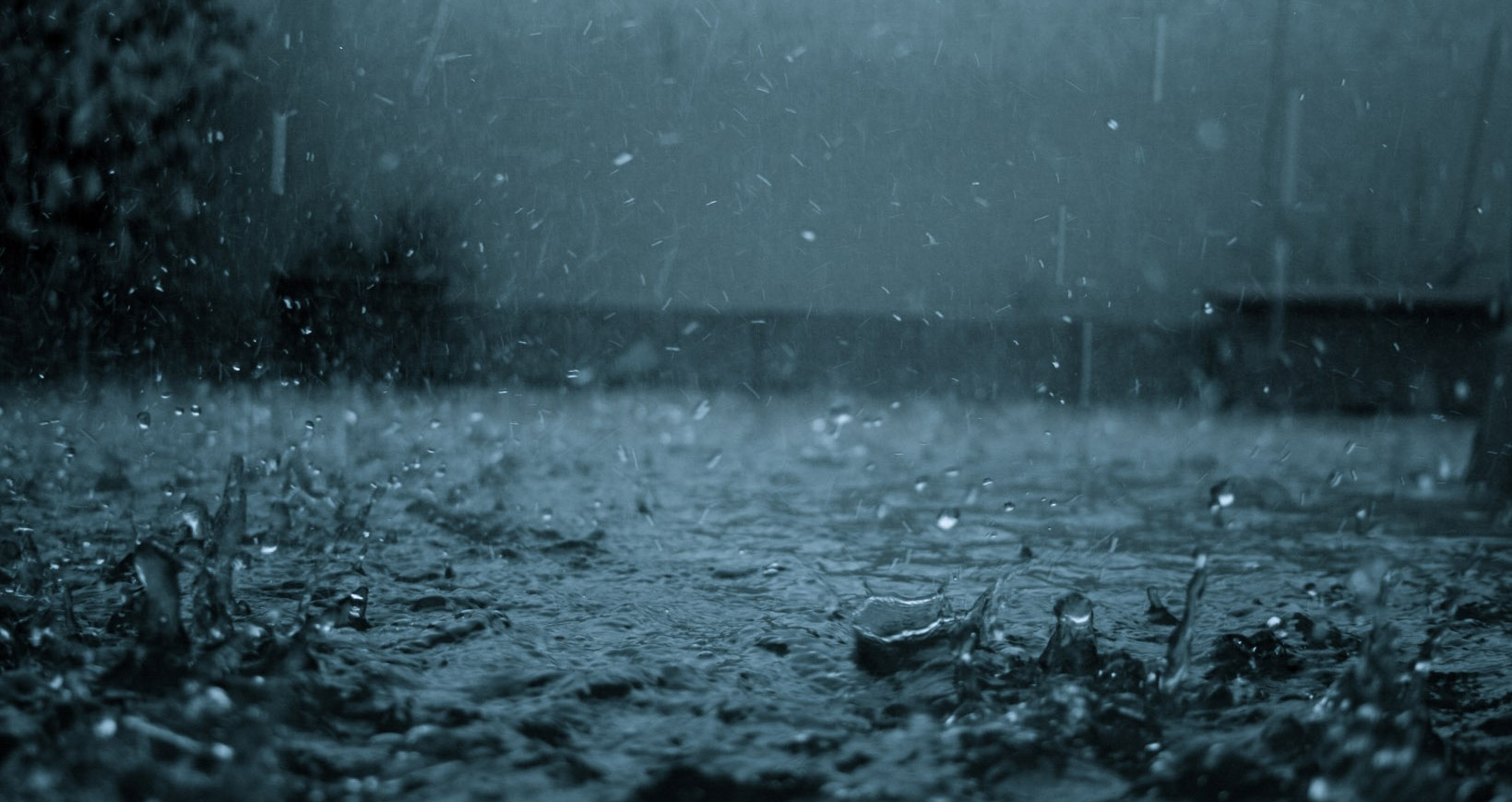 Tips To Eat Healthy In Monsoon